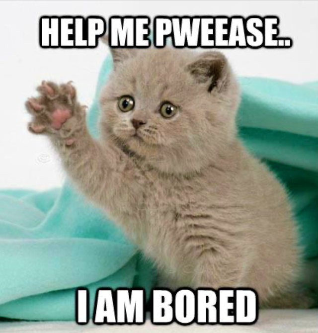 Are you always bored?