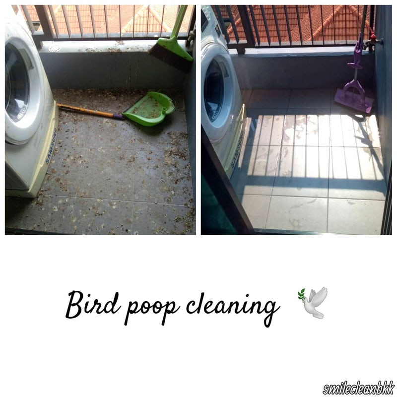 Bird poop deep cleaning at Udomsuk, Bangkok