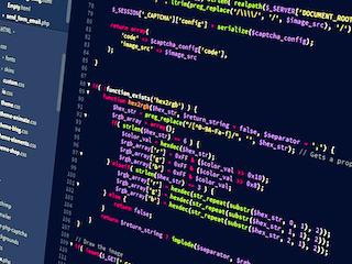 Web Developer Jamaica