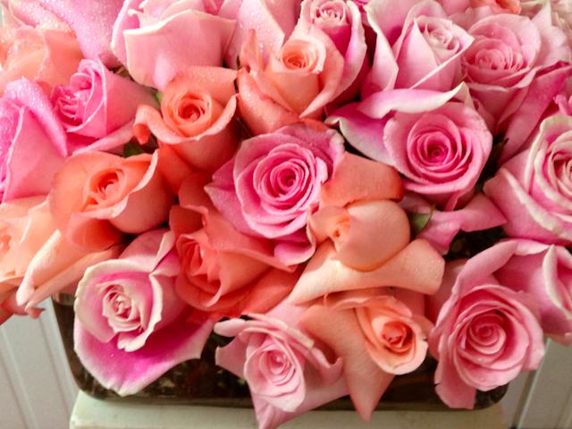 Valentine's Day Pink Rose Gift Velene's Floral