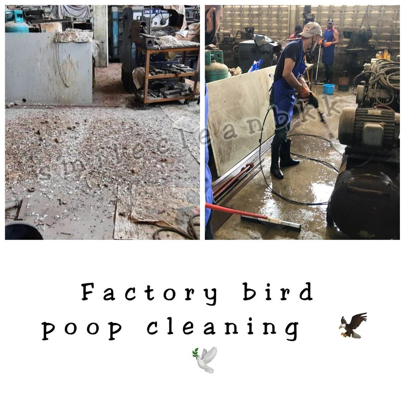 Deep cleaning bird poop for the small factory before re-opening again in Bearing, Bangkok.