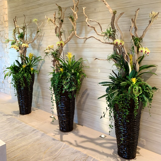 Yellow Flowered Bromeliads, Orchids with Airplants Velene's Floral