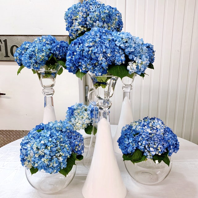 Lush Blue Hydrangea Arrangements for Event Velene's Floral