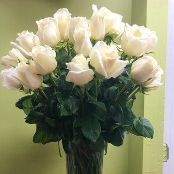 Deep Green Leaves, with Pure White Roses Velene's Floral