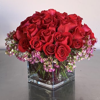 Perfect Red Roses with Pink Baby's Breath Velene's Floral