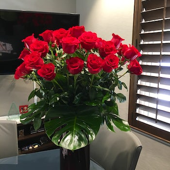Tall and Glorious Red Roses Velene's Floral