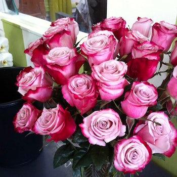 Ombre Dark Pink, Light Pink Roses Velene's Floral