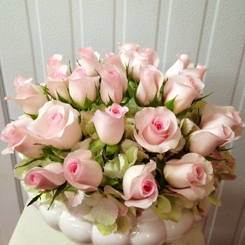 Light Pink Roses Velene's Floral