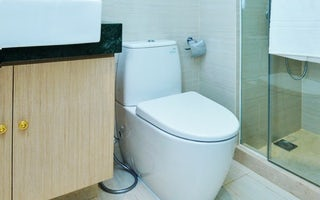 Toilet Repair & Replacement