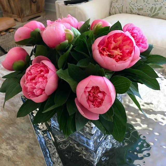 Pink Velene's Floral